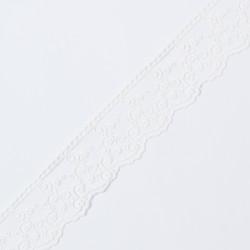 Кружево на сетке KRUZHEVO 45мм молочный